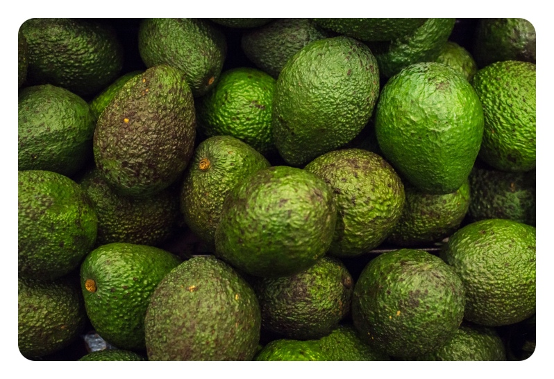 Fresh organic avocados in display at local farmers market
